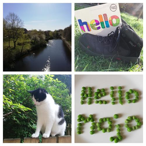 Collage of photos outside, walking boots and a cat